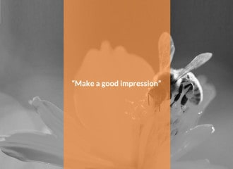 "Alternative finance. Image showing a bee on a flower with the words ""Make a good impression"""