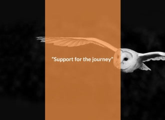 "Small business mentoring. Image showing an owl flying with the words ""Someone for the journey"""