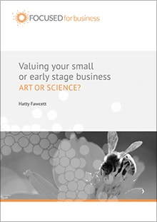 Valuing your small or early stage business ebook